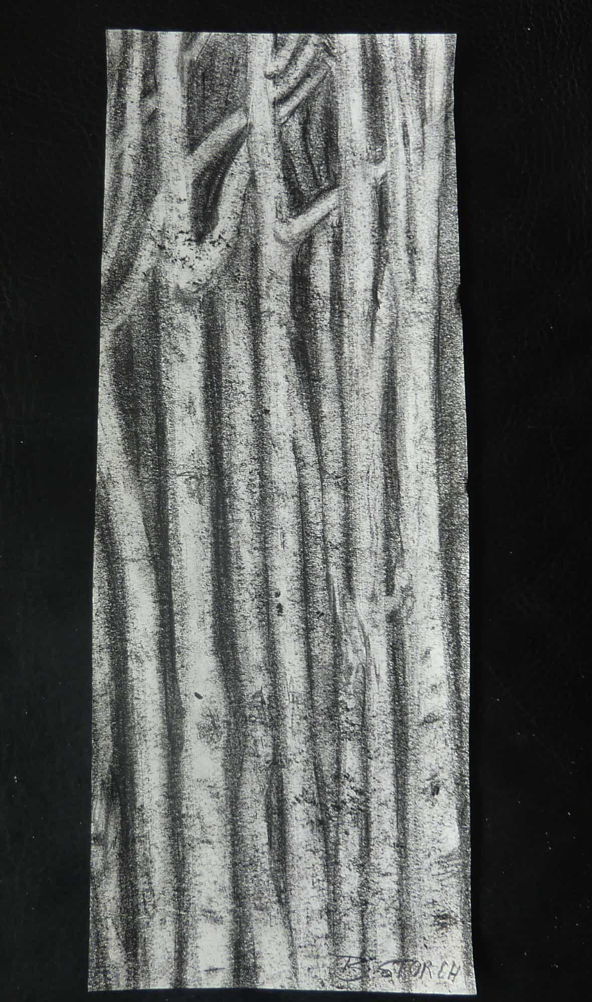 Brigitte Storch