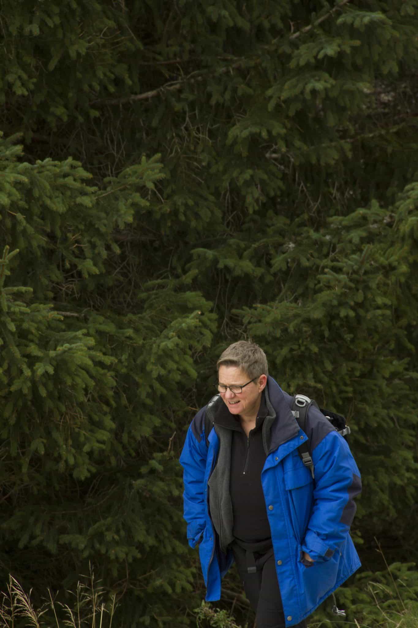 Bin dann mal im Wald - Vera Greif