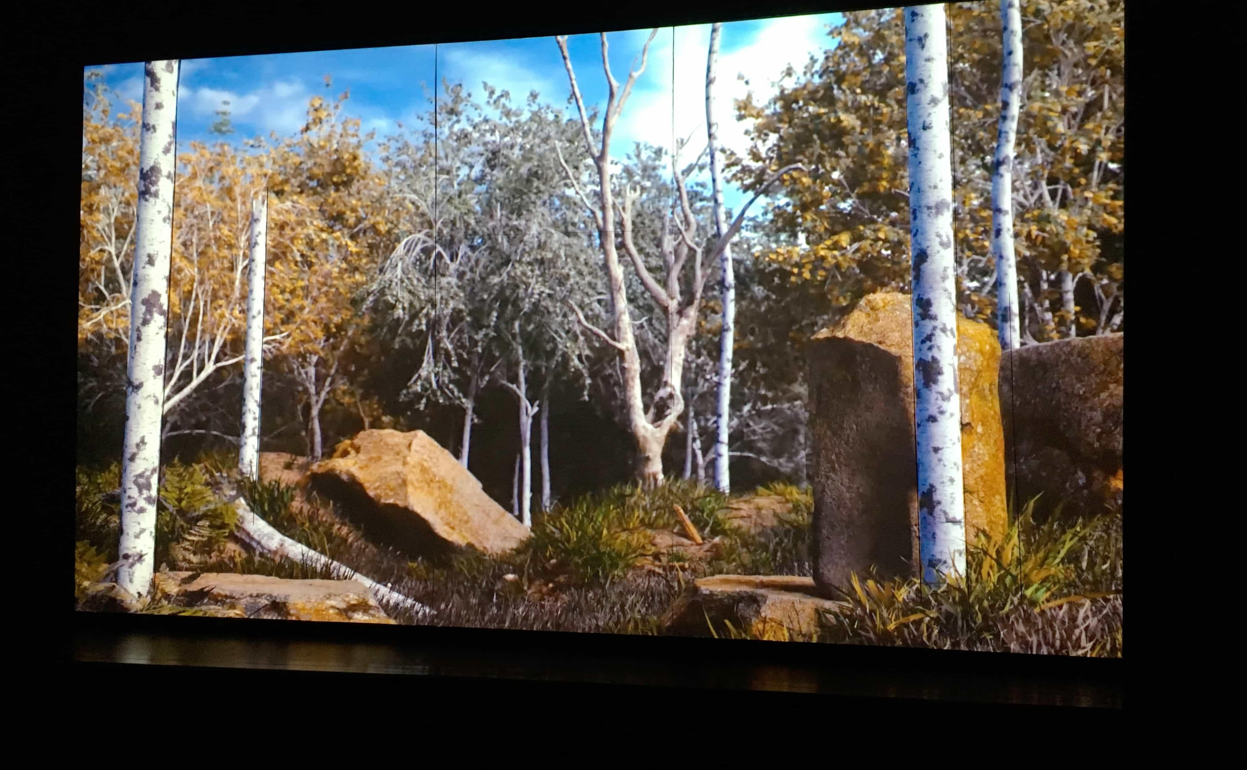 IN THE WOODS 2088 Video-Installation von Daniel Mihaila